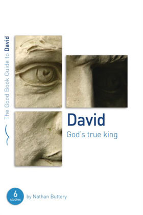 Picture of David: God's true king (Good book guide)