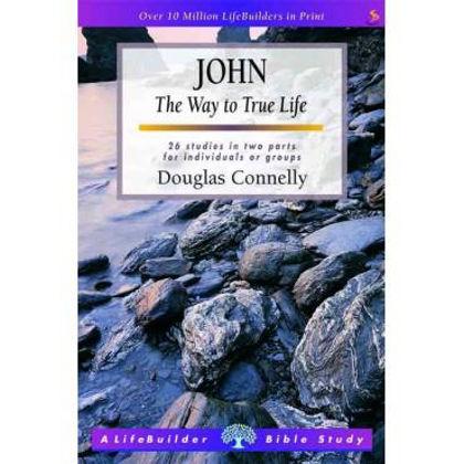 Picture of John (Lifebuilder)