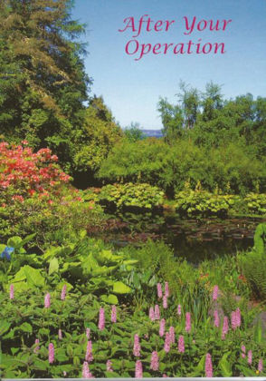 Picture of Inverewe Gardens, Poolewe, Scotland