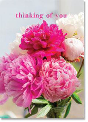 Picture of Full pink paeonies