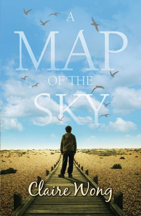 Picture of Map of the sky A