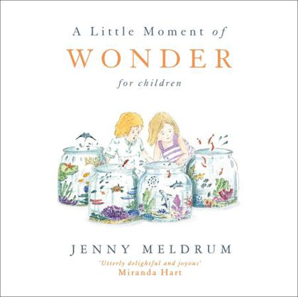Picture of Little moment of wonder, A